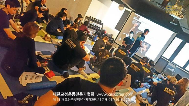 18차 CES KOREA 교정운동전문가 과정 5주차 (3)