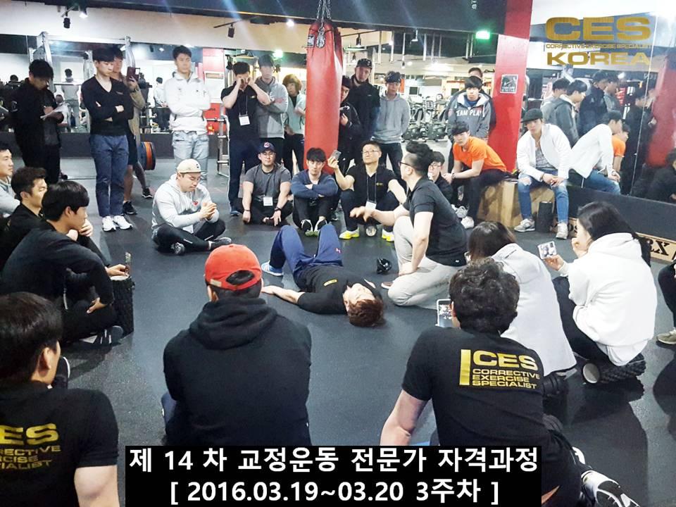 CESKOREA 대한교정운동전문가협회 14기 3주차 수업 (31).JPG