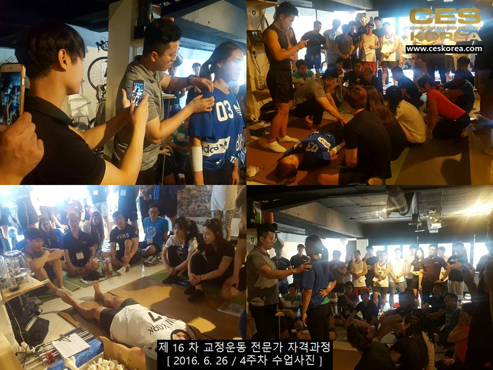 CES KOREA 제16차 교정운동전문가 자겨과정 4주차 (3)