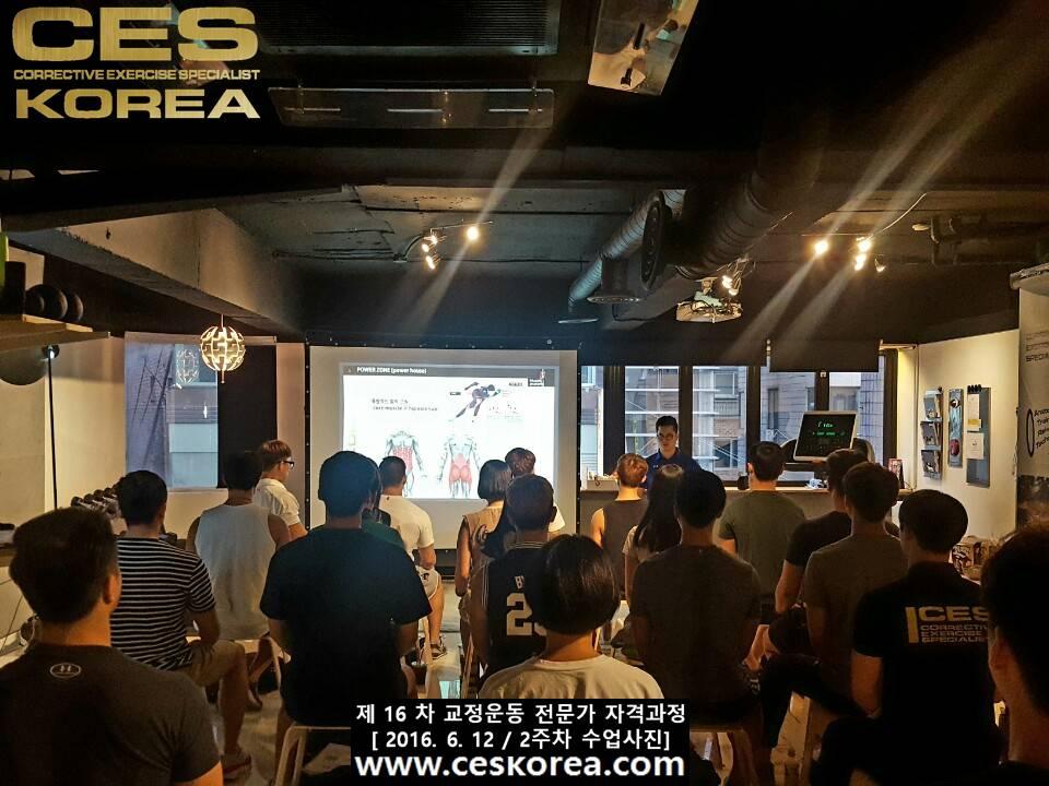 CES KOREA 교정운동전문가 자격과정 16기 2주차 수업사진 (5)