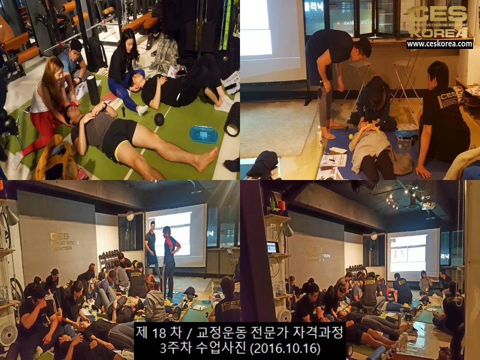 18차 CES KOREA 교정운동전문가 과정 3주차 (9)