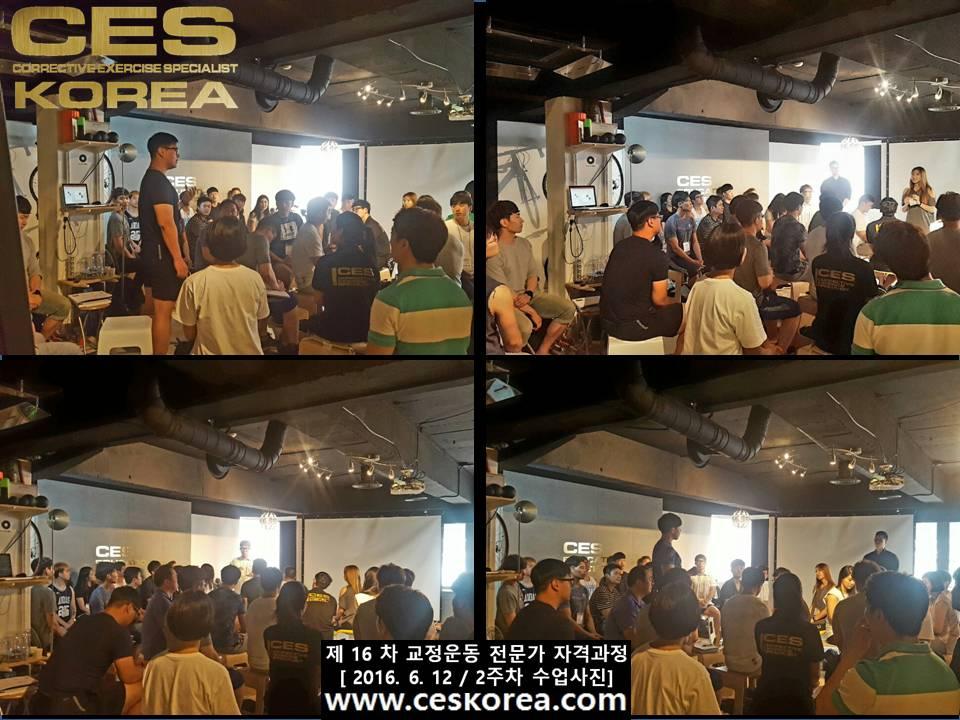 CES KOREA 교정운동전문가 자격과정 16기 2주차 수업사진 (7)