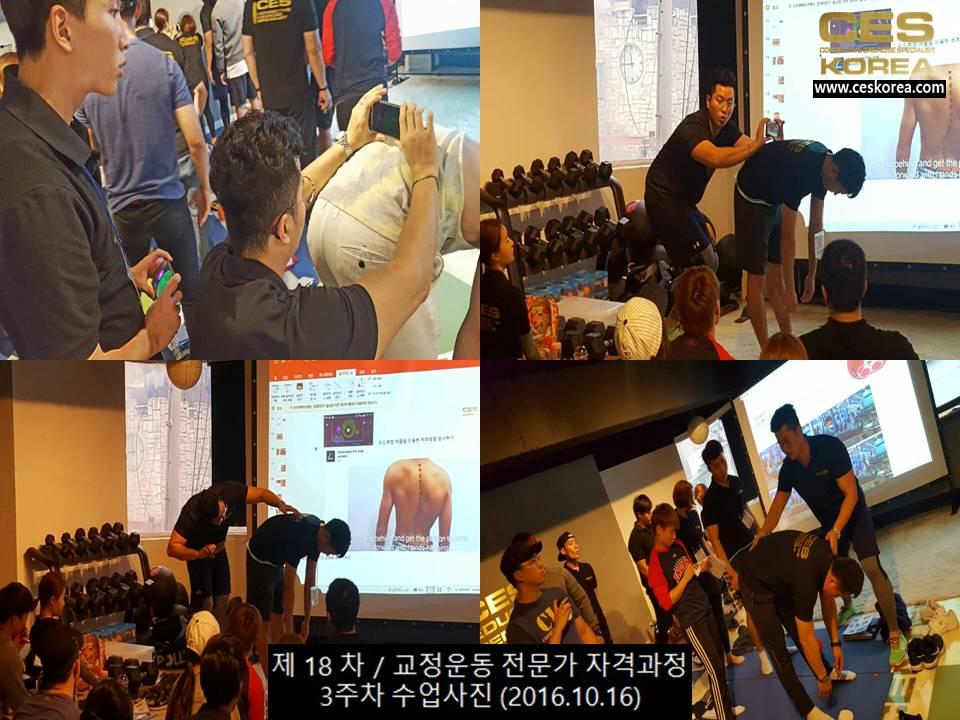 18차 CES KOREA 교정운동전문가 과정 3주차 (6)
