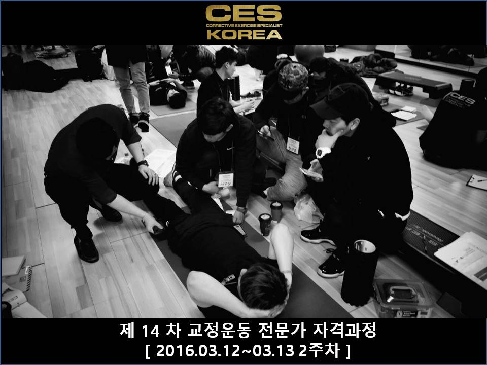CES KOREA 14차 교정운동전문가과정 2주차 2016031213 (18).JPG