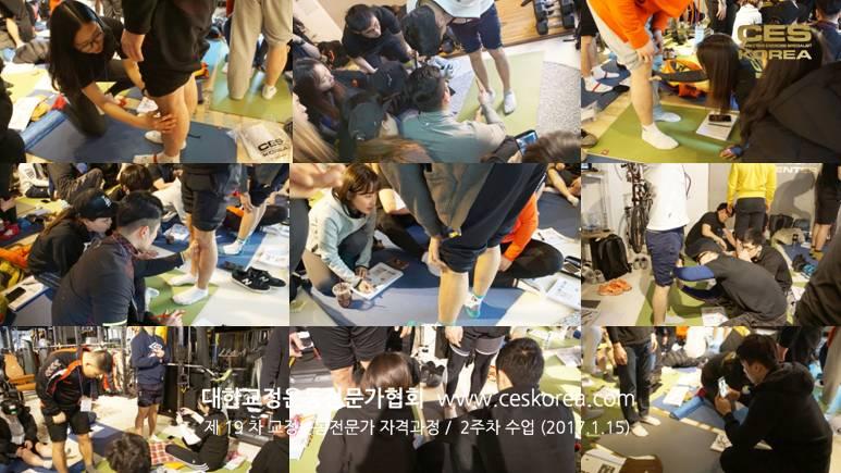 19기 교정운동전문가 CES KOREA 2주차 (1-2)