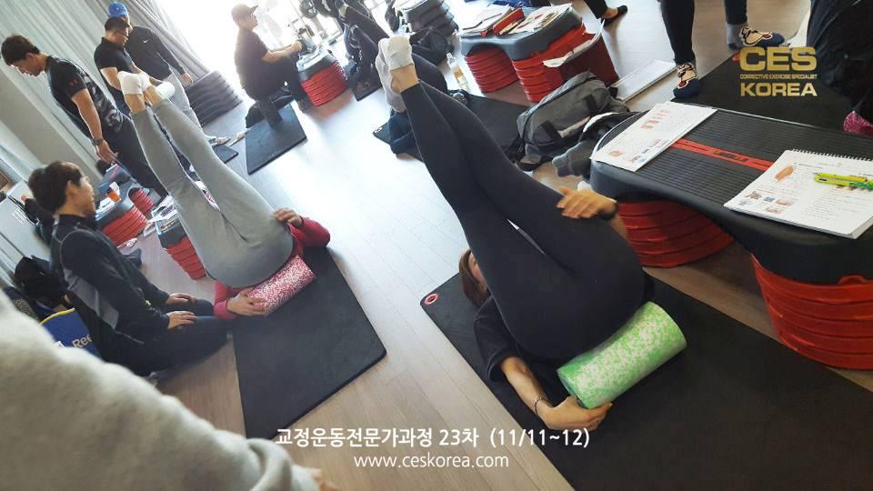 CES24차 4주차 교정운동전문가과정 (17)