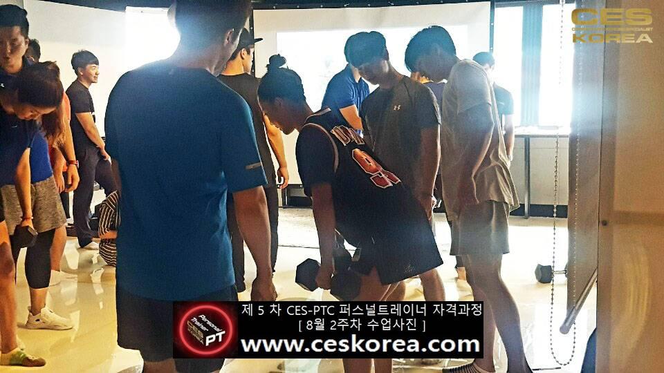 제 5 차 ces korea 퍼스널트레이너 과정 2주차 수업 (25)