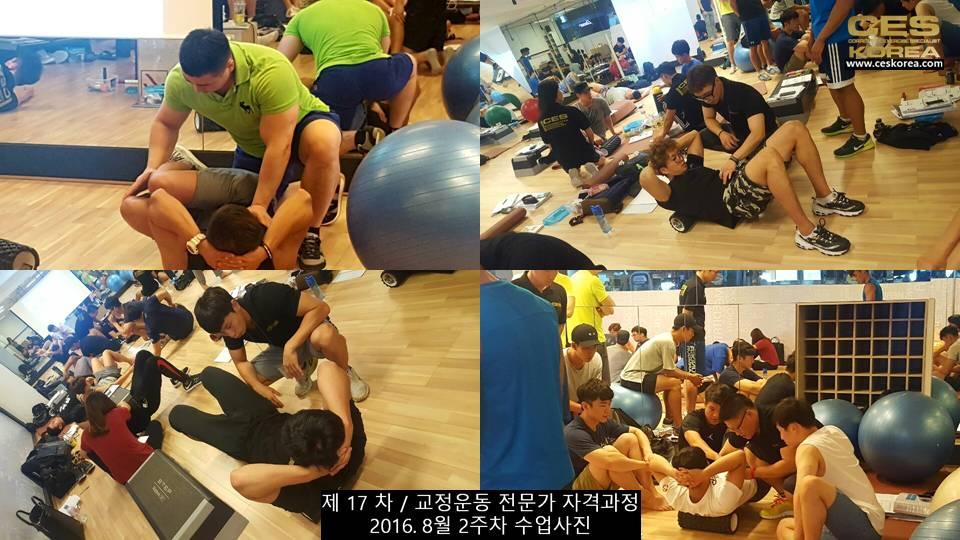 17차 ces korea 교정운동 전문가 과정 2주차 (6)