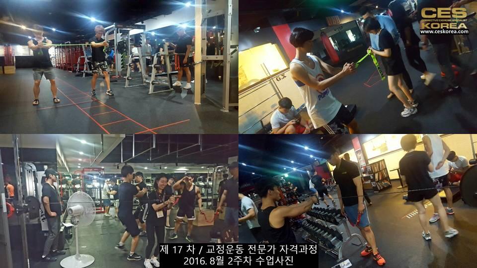 17차 ces korea 교정운동 전문가 과정 2주차 (29)