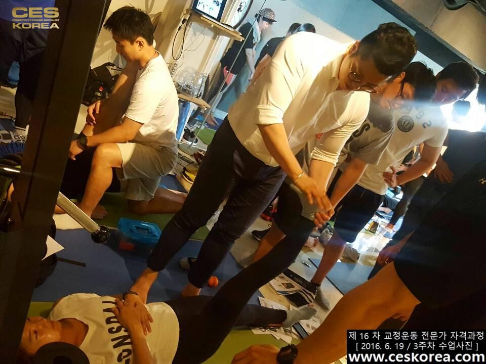CES KOREA 16차 교정운동 전문가 자격과정 3주차  (12)