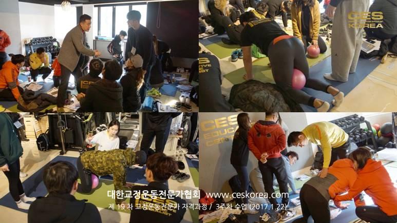 19차 CES KOREA 교정운동전문가 3주차 과정 (10)