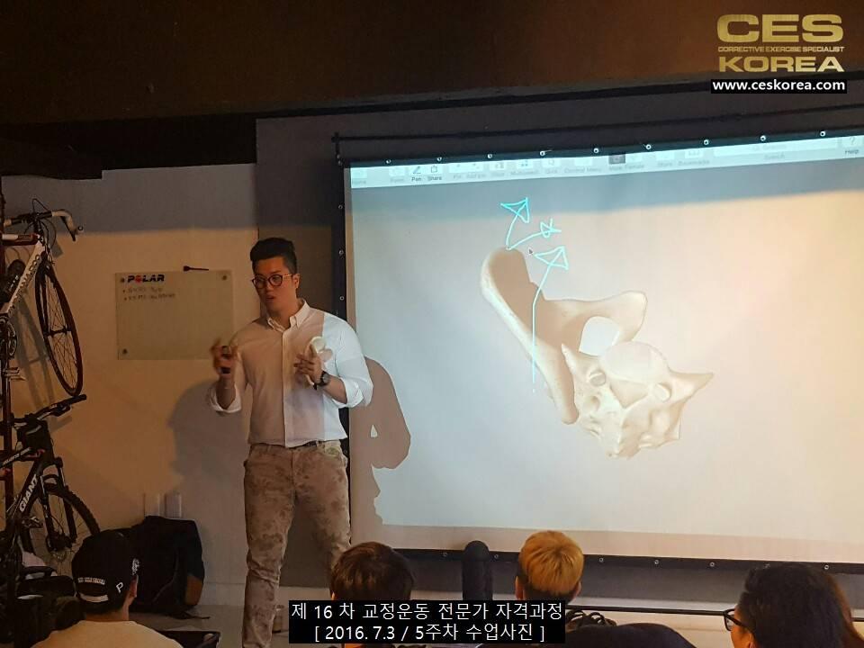 CES KOREA 교정운동전문가 자격과정 16차 5주차 (3)