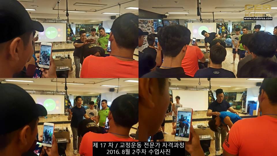 17차 ces korea 교정운동 전문가 과정 2주차 (11)