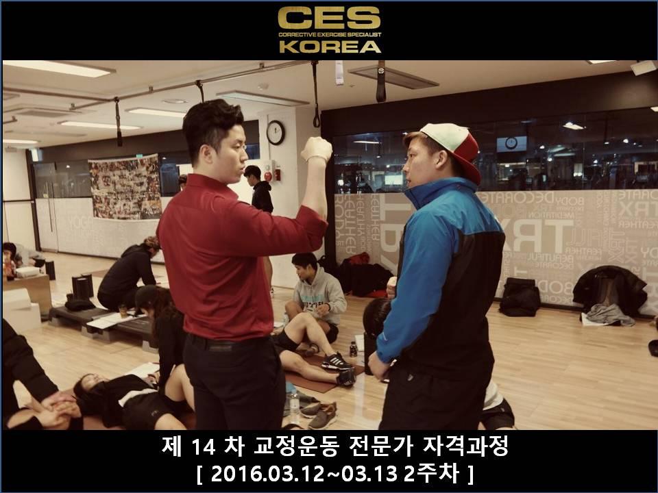 CES KOREA 14차 교정운동전문가과정 2주차 2016031213 (16).JPG