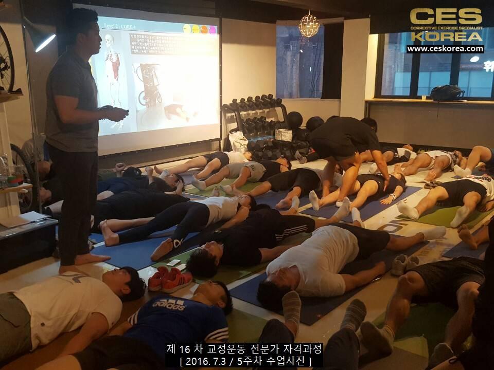 CES KOREA 교정운동전문가 자격과정 16차 5주차 (14)