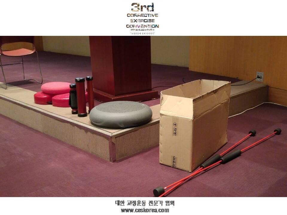 CES KOREA 교정운동전문가협회 3번째 코엑스컨벤션 (37).JPG