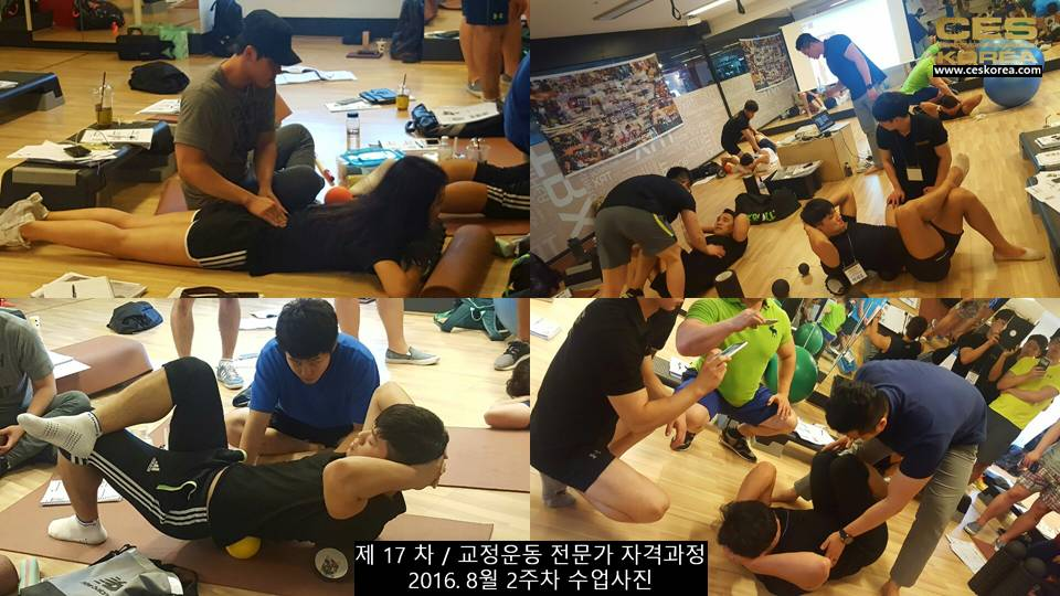 17차 ces korea 교정운동 전문가 과정 2주차 (7)