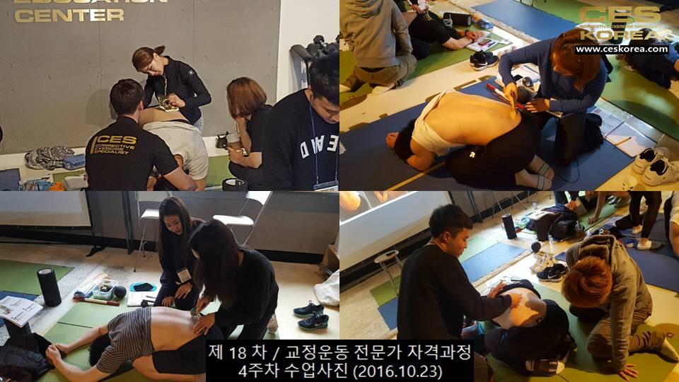 18차 CES KOREA 교정운동 4주차 (8)