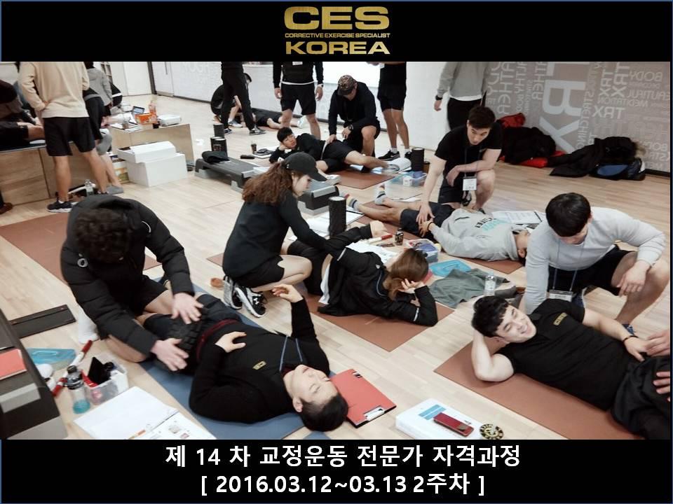 CES KOREA 14차 교정운동전문가과정 2주차 2016031213 (14).JPG
