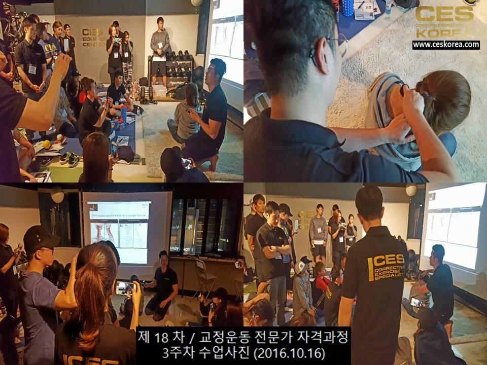 18차 CES KOREA 교정운동전문가 과정 3주차 (8)