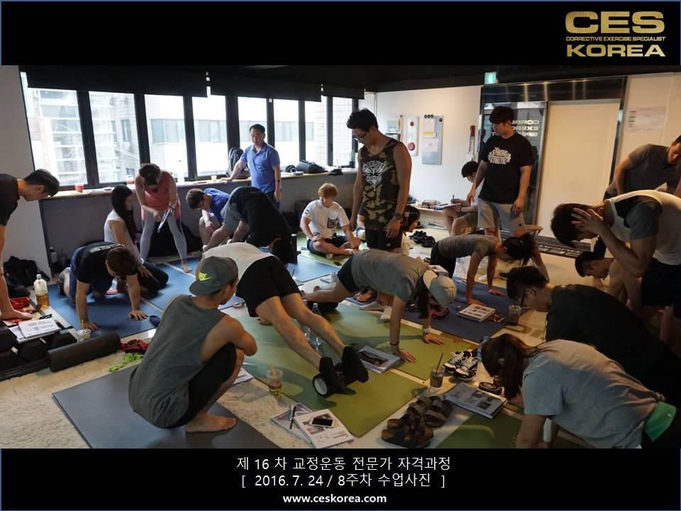 CES KOREA 16차 교정운동 전문가 과정 (8)