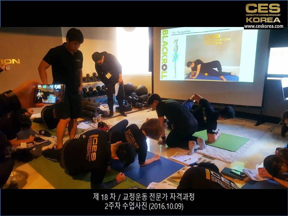 제18차 교정운동전문가 자격과정 2주차 수업 (8)
