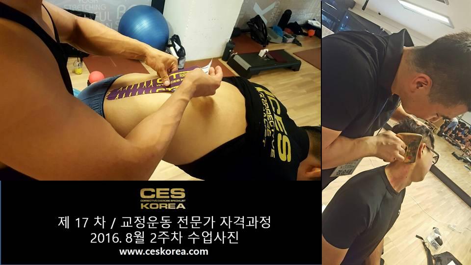 17차 ces korea 교정운동 전문가 과정 2주차 (4)