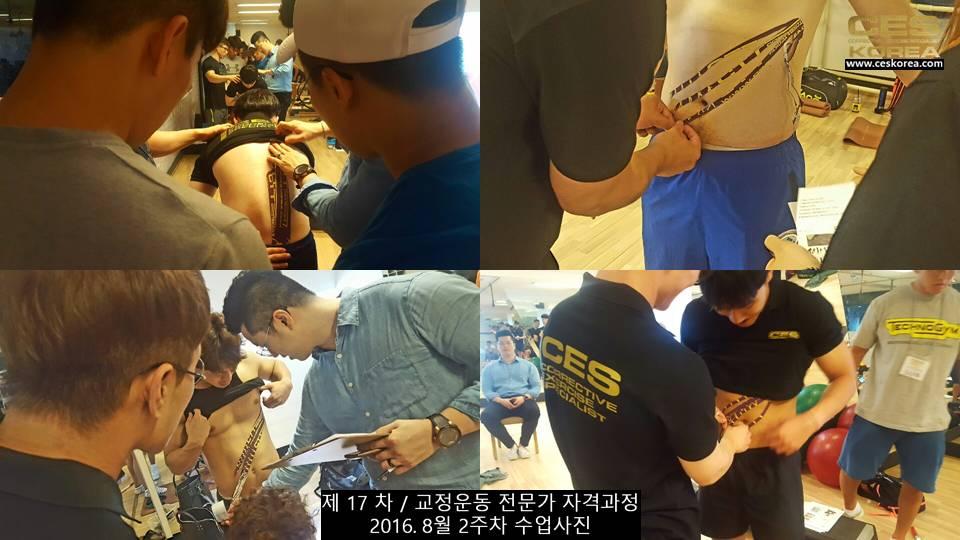 17차 ces korea 교정운동 전문가 과정 2주차 (33)