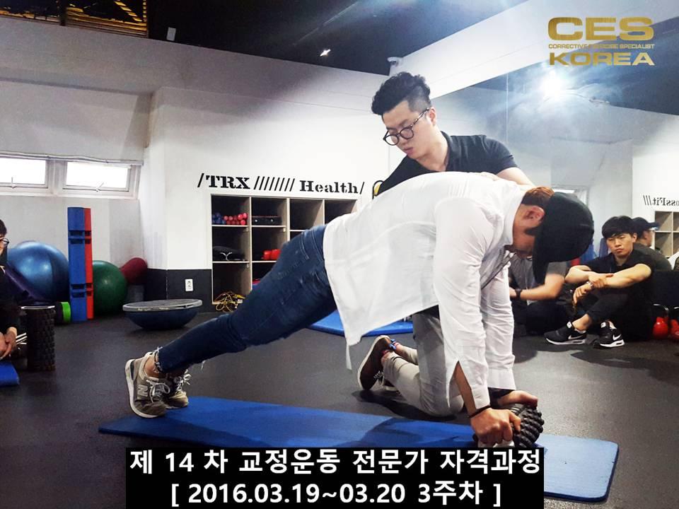 CESKOREA 대한교정운동전문가협회 14기 3주차 수업 (35).JPG