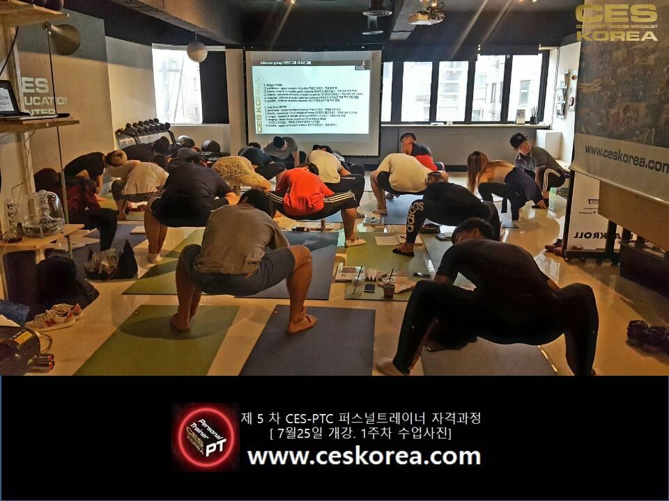 CES KOREA 퍼스널트레이너자격과정 ces ptc 5기 1주차 (16)