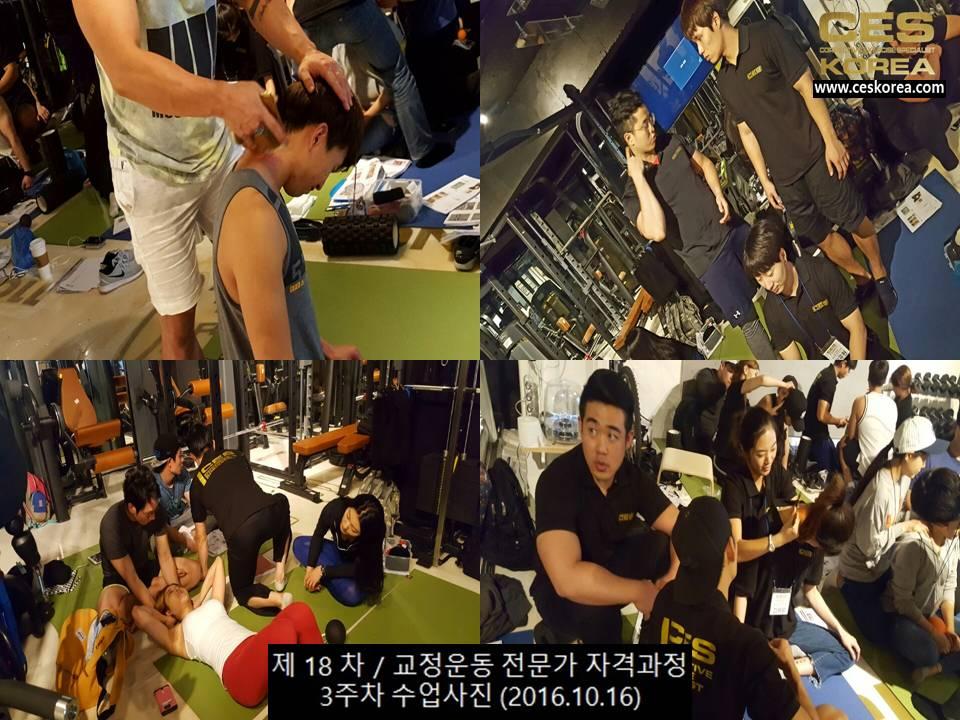 18차 CES KOREA 교정운동전문가 과정 3주차 (11)