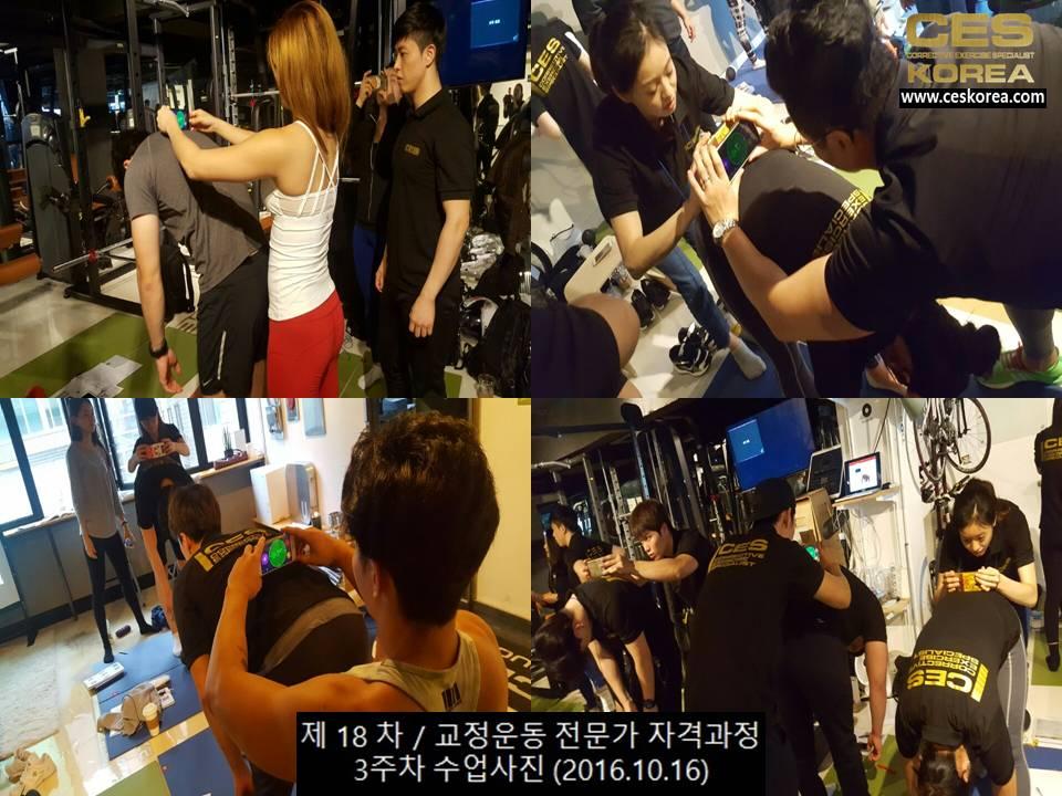 18차 CES KOREA 교정운동전문가 과정 3주차 (4)
