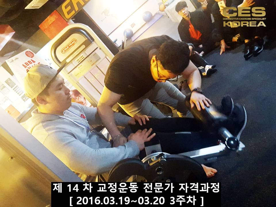 CESKOREA 대한교정운동전문가협회 14기 3주차 수업 (23).JPG