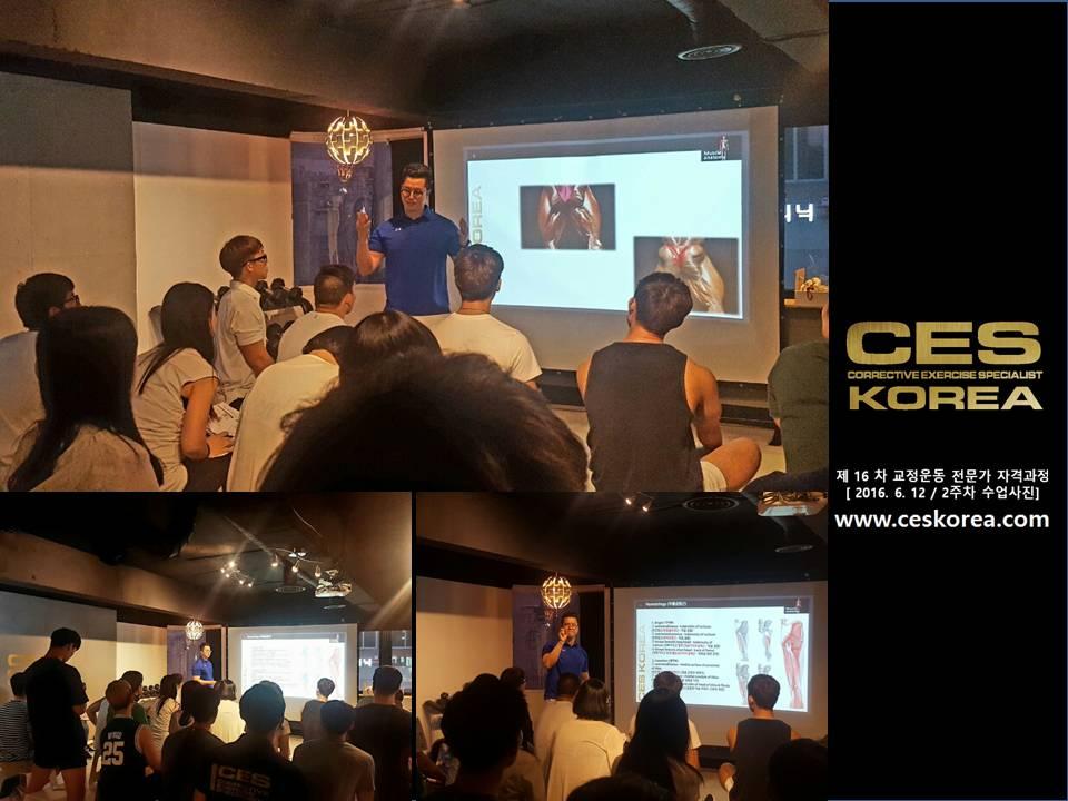 CES KOREA 교정운동전문가 자격과정 16기 2주차 수업사진 (8)
