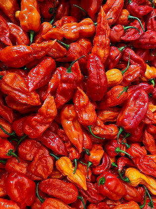 Fresh Ghost Chillis per 100g