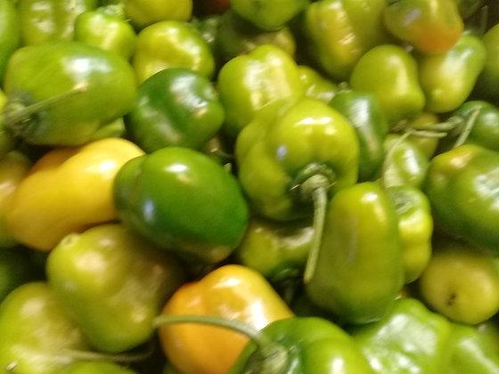 Fresh Green Rocoto Chillies per kilo