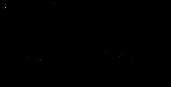Website Logo VNF Theoretic Black.png
