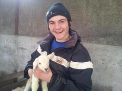 Henry Lambing