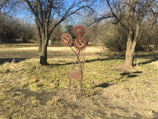The Cowskin Disc Golf Course
