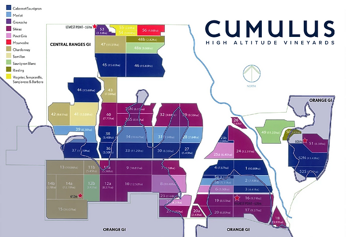 Cumulus_Estate_Vineyard_Map_2017May.png