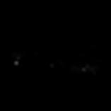 logo transparent copy (Squared).png