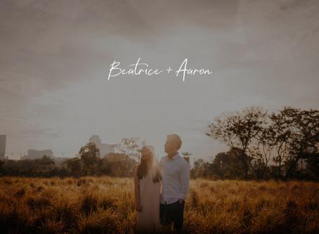 Beatrice + Aaron | Jurong Lake Gardens | Prewedding