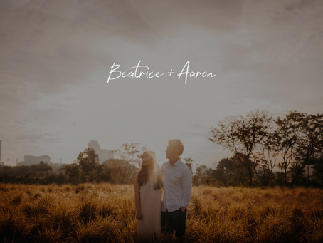Beatrice + Aaron | Jurong Lake Gardens | Prewedding