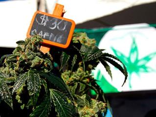 D.C. Superior Court Clears Hurdle for Legal Marijuana Sales