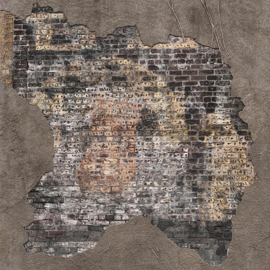 Revealed Brick