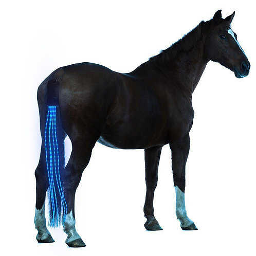 LED Horse Tail Light- Equestrian harness for safety; incl. chargeable USB
