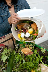 Food_Scraps_and_Yard_Debris_Collection_i