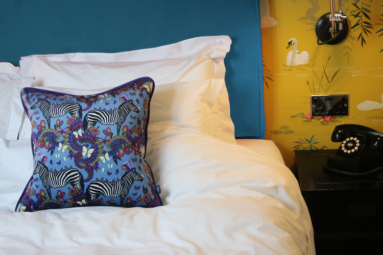Blue zebra cushion