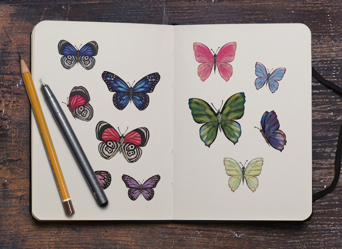 Sketchbook with butterflies