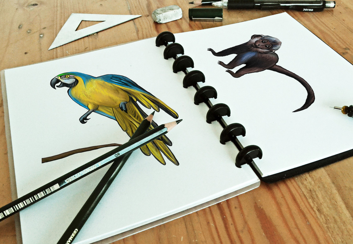 Sketchbook with parrot and monkey